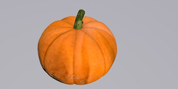pumpkin c4d free