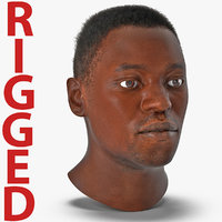 African American Male Head with Hair Rigged 2 3D Model