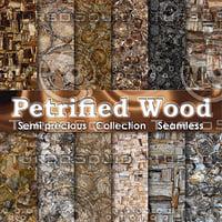 Petrified Wood Semi Precious Gemstones
