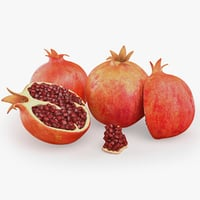 3d model photorealistic pomegranate realistic real