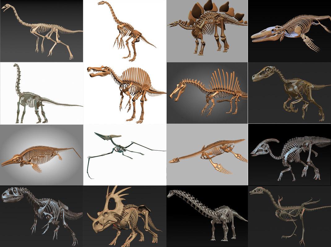 3d dino skeleton