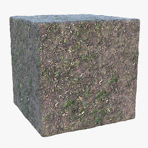 Sparse Grass (86) - Photogrammetry based Texture