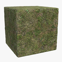 Grass (87) - Photogrammetry based Texture