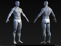 Male-Body-Mesh pic