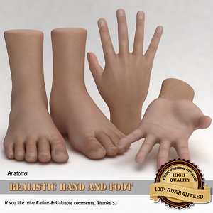 realistic hand foot 3ds