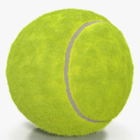 Tennis Ball with Fur 3D Model