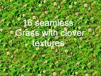 Grass with clover Collection