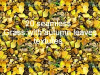 Grass with Autumn leaves Collection