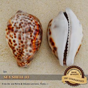 3d model sea shell seashell