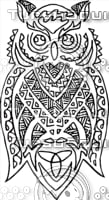 Polynesian owl
