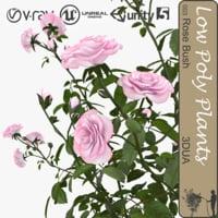 bush roses 003 3d 3ds