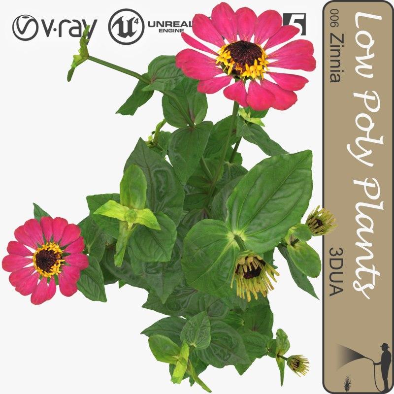 plant 006 zinnia 3d model