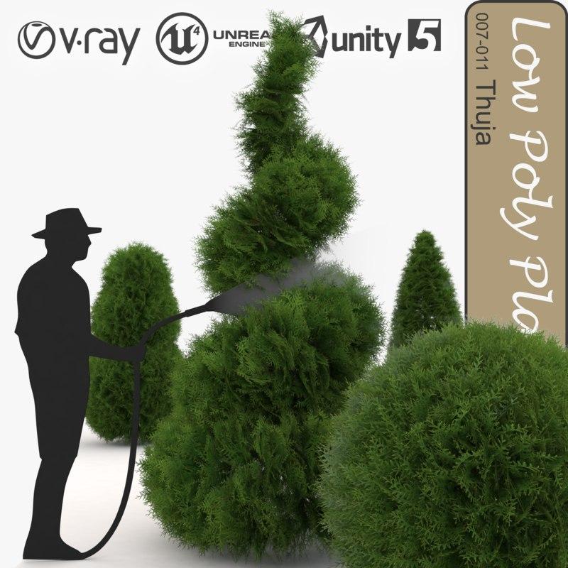 plant thuja 007 trees 3d model