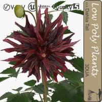 plant 013 dahlia tall 3d c4d