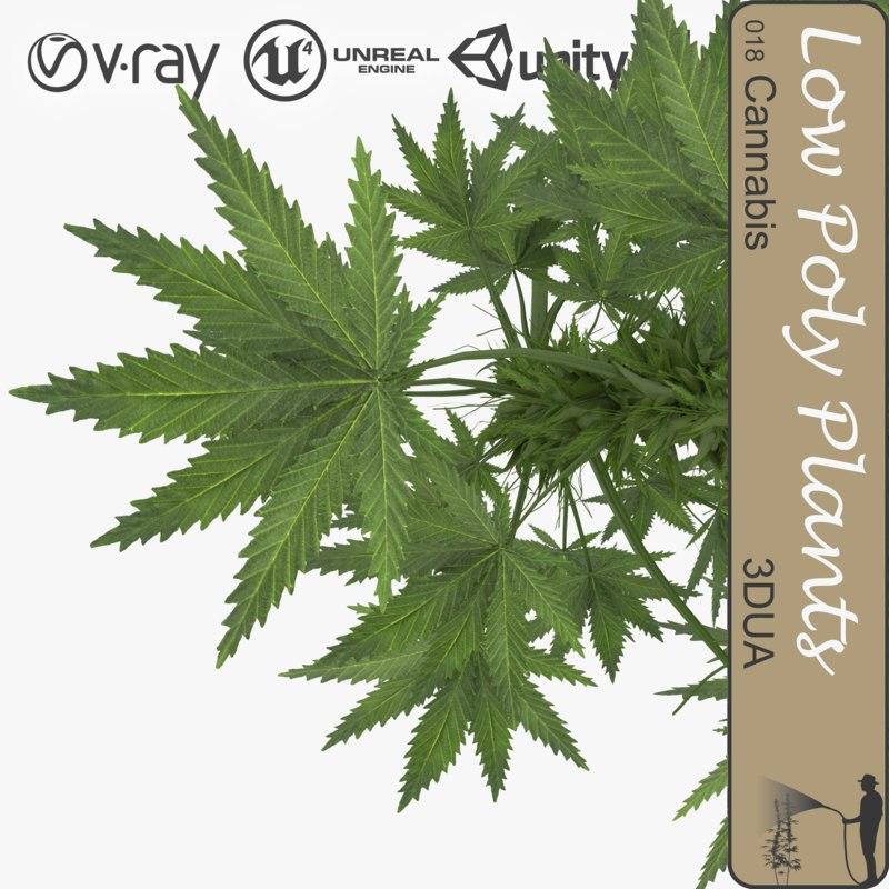 plant 010 cannabis 3d model