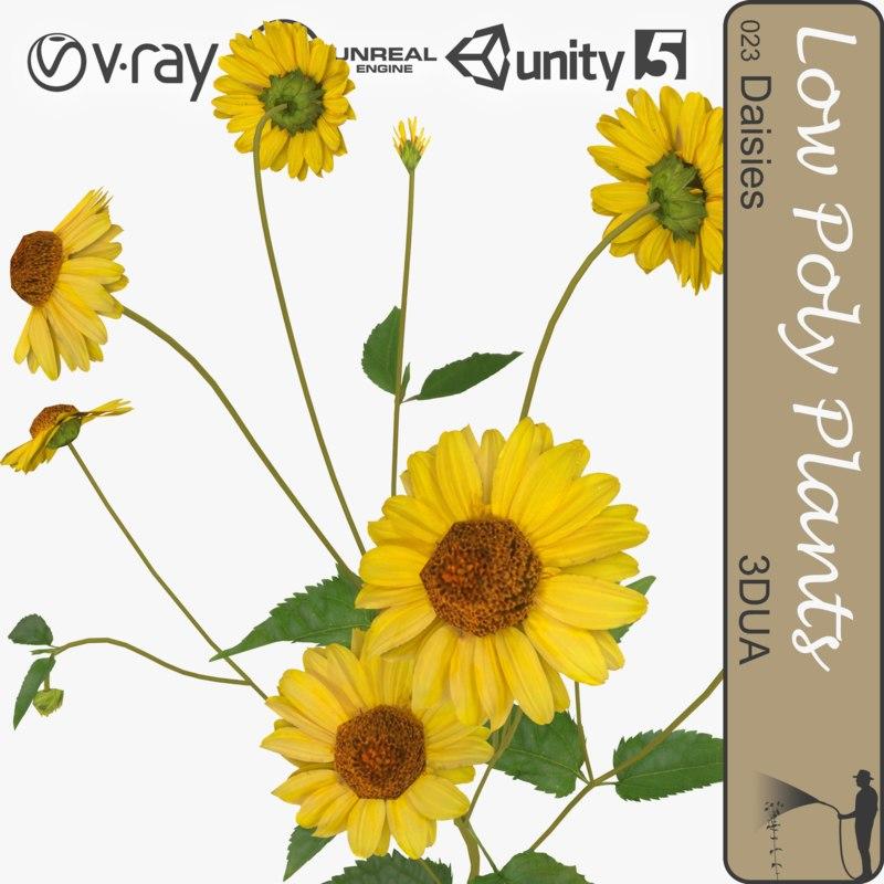 3d yellow daisy 023