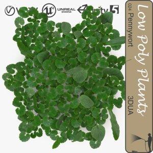 plant 024 pennywort 3d model