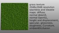 grass 2048x2048 seamless multi map