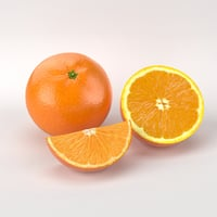 photorealistic orange fruits 3d max