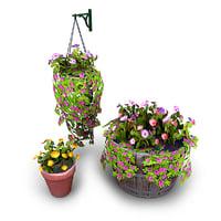 Potted Plants Bundle 1