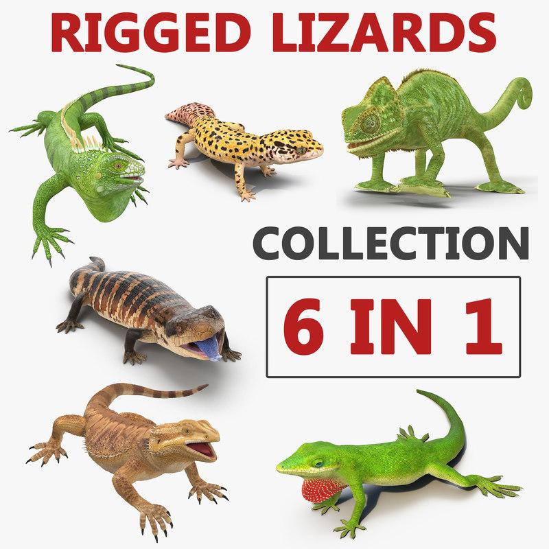 rigged lizards 2 3D model