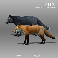 3d red fox animations
