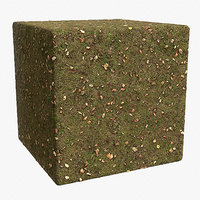 Grass (141) - Photogrammetry based PBR texture