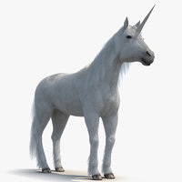Unicorn with Fur 2 3D Model