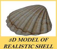 3d model realistic shell