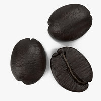 roasted french coffee bean 3d model