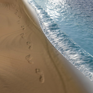 beach footprint 3d model