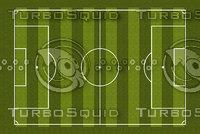 Soccer Field Texture 2
