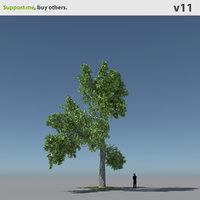 tree oak v11 max free
