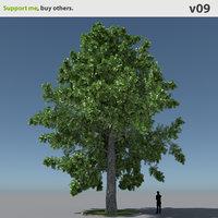 Free 3D Plant Tree Models | TurboSquid