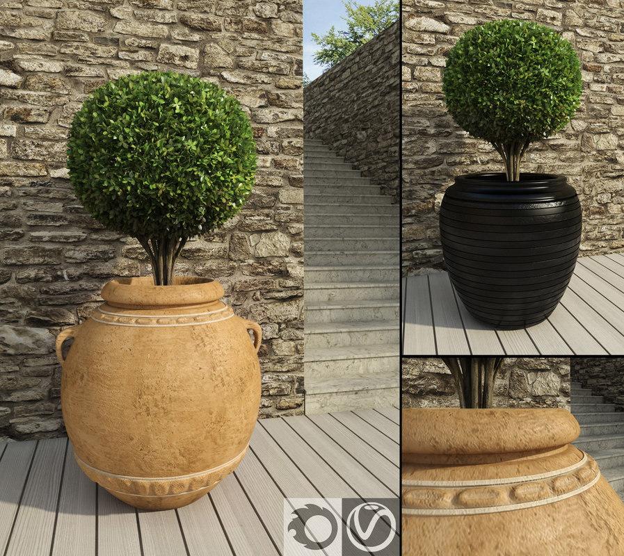 boxwoods rustic pots 3d max