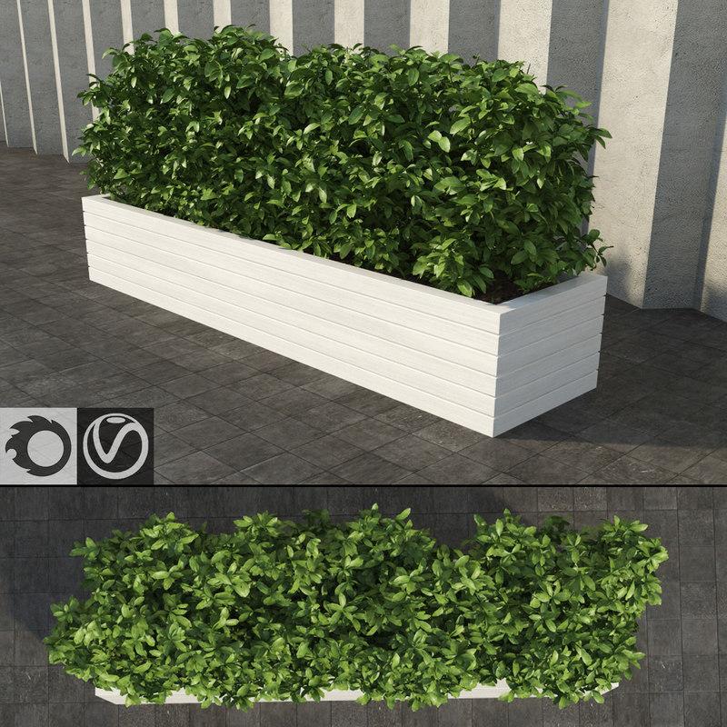 shrub rectangular planter 3d model