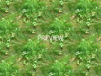 Grass/Ground 08