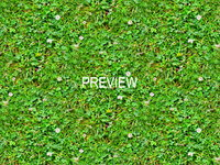 Grass with clover 15