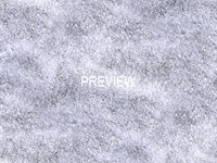 Ice 08
