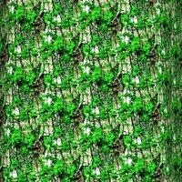 Mossy tree bark 10