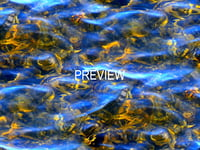 Shallow water 06