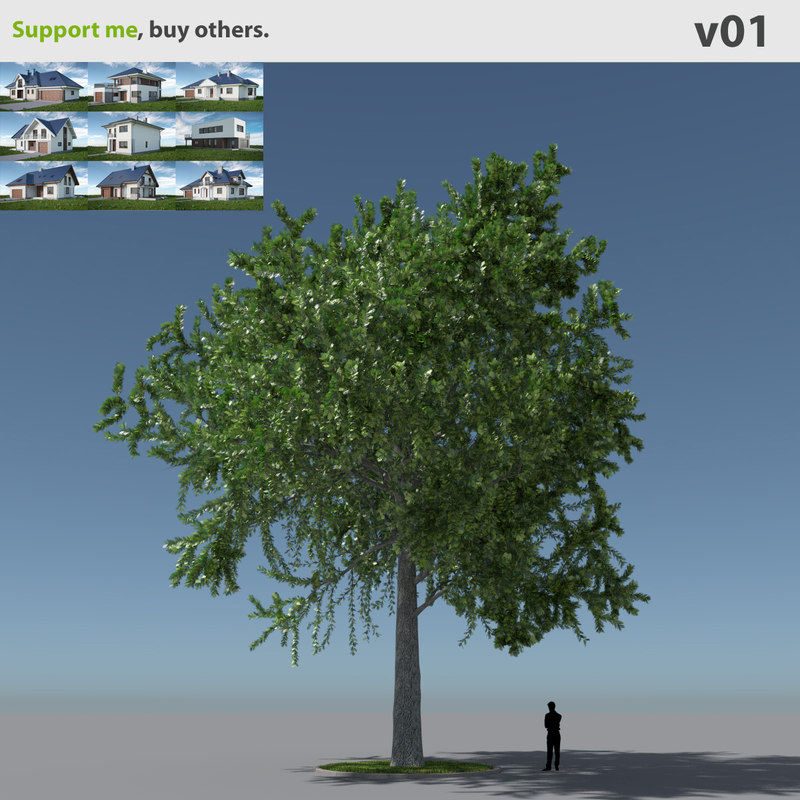 Freebie] Collection Nature: vegetation, plants, ground