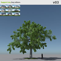 free max mode tree oak v3