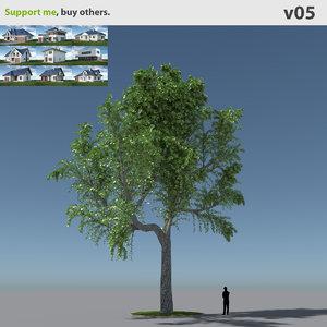 tree oak v5 max free