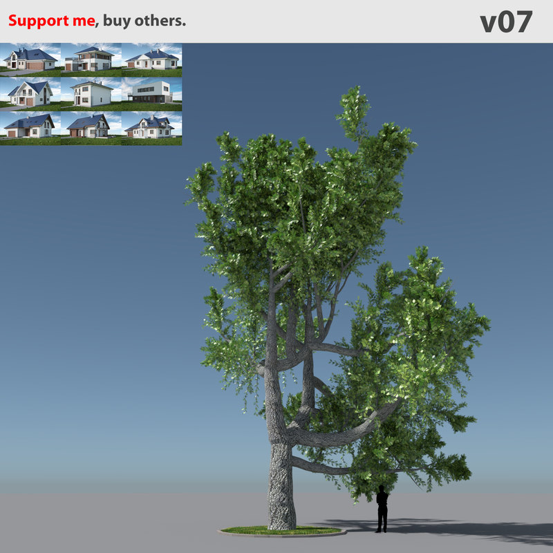 tree oak v7 max free