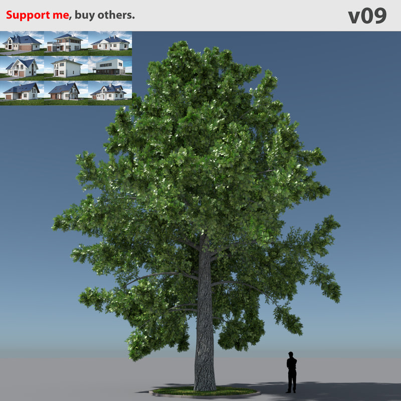 free max model tree oak v9