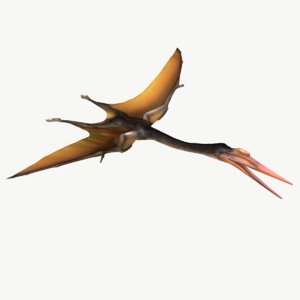 quetzalcoatlus 3d model