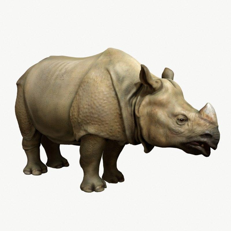obj indian rhinoceros