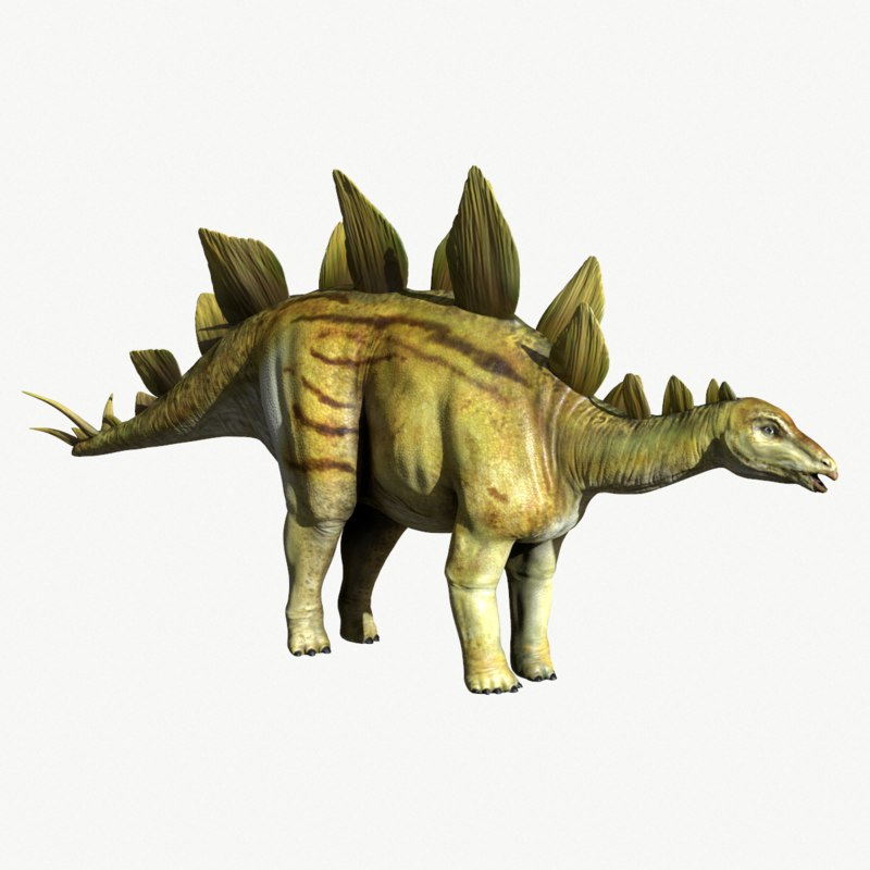 stegosaurus 3d obj