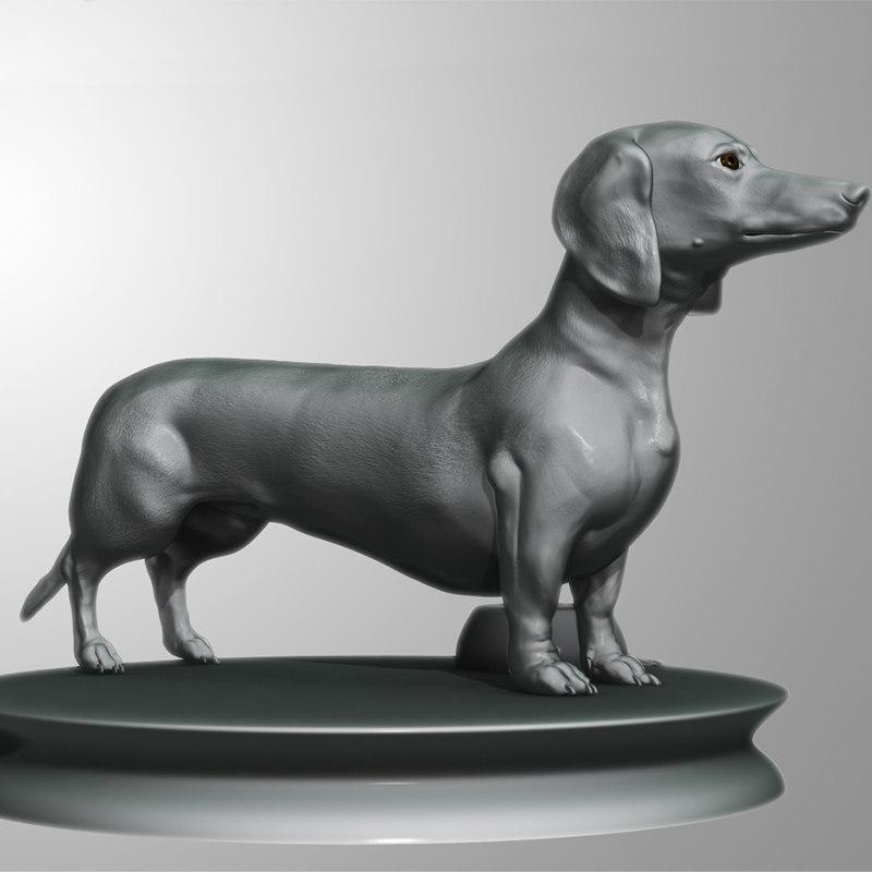 3d dachshund dog model